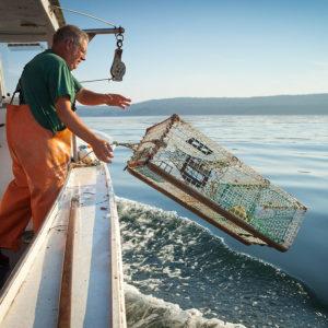 alquiler barco pesquero mallorca